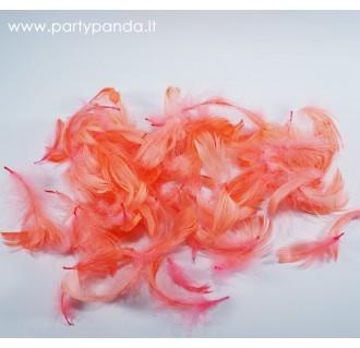 Dekoratyvinės plunksnos, persikų spalvos